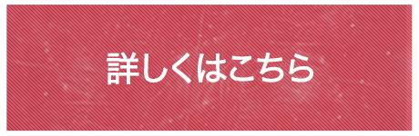 初級ライセンス取得29800円キャンペン